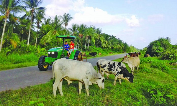Berbice to have its own School of Agriculture- Mustpah